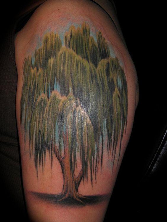 Willow Tree Tattoo